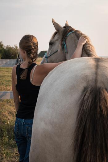 equine-program